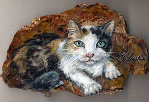 0004-cat6.jpg